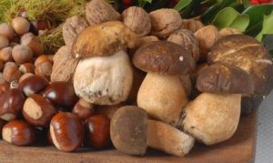 funghi-e-castagne